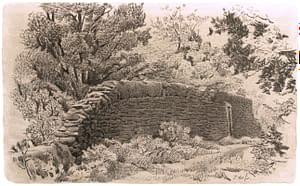 Italo : Le mur dans la forêt