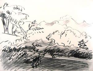W Gimmi : Paysage