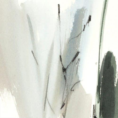 ck 115 sombre cypres 15 detail